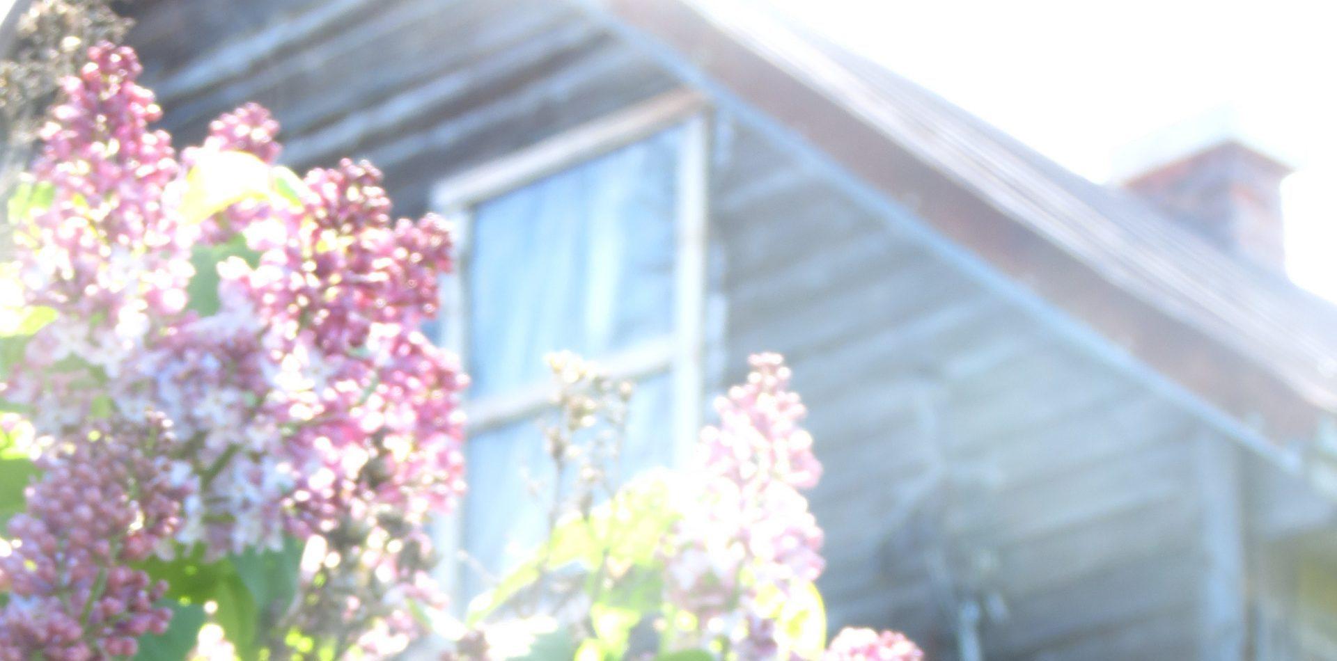 La Maison aux Lilas de l'Anse