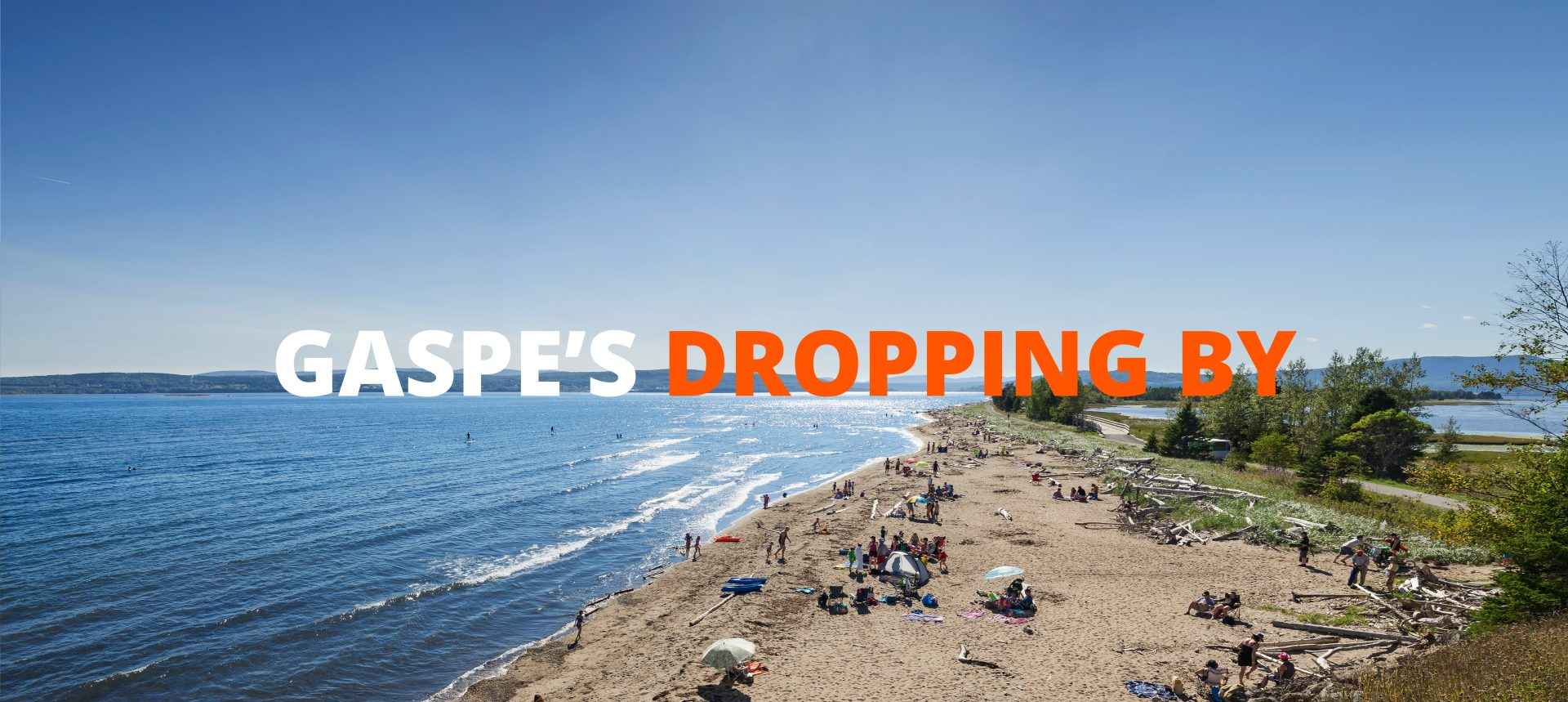 Gaspe's dropping by : Sink or Swim?
